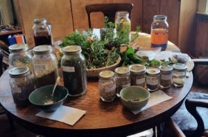 table full of fresh herbs, roots and barks for tea making class