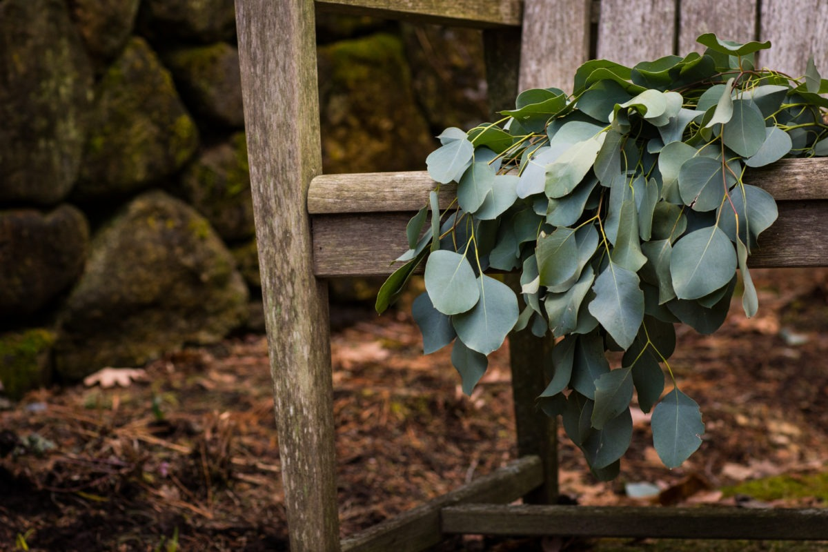 Silver dollar eucalyptus bouquet draped over the front of a weather teak chair, earthy stone wall background